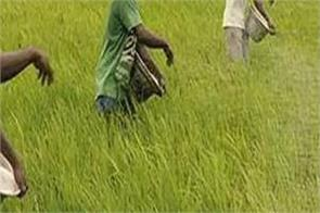 retail inflation for agriculture and rural workers eased