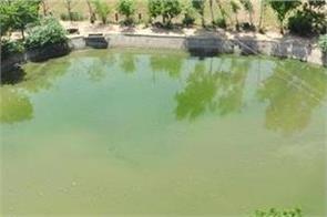 55 ponds to be built under seachewal jalandhar