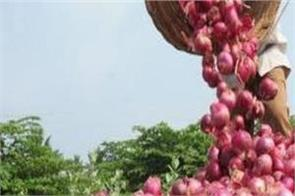 india sent 30 000 quintals of onions to bangladesh  bhutan and nepal