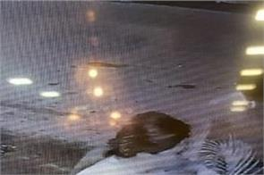 moga salon shop theft video viral