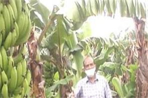 gujarat vadodara farmers agriculture bill benefit