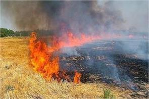 stubble burning ban