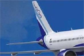 indigo flight delhi mumbai bird hit
