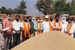 paddy procurement begins in dera baba nanak