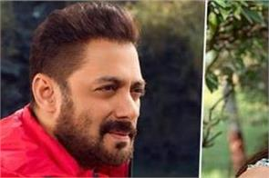 south actress will make her bollywood debut with salman khan  s   antim