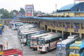 government of punjab new buses mini buses permits