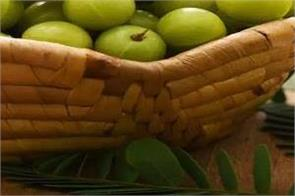 amla juice is good for health  right time and amount to drink it