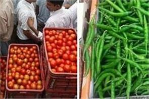 up farmers  export  30 tonnes  green chillies  tomatoes bangladesh  nepal
