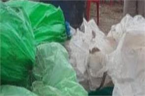 border village of ferozepur  cia police raid  recovered 15 thousand liters