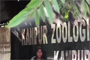 bird flu kanpur zoo birds death containment zone
