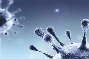 corona virus infections worldwide