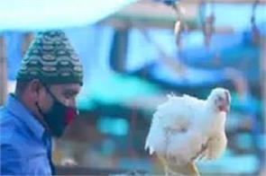 bird flu central government uttarakhand delhi poultry farm