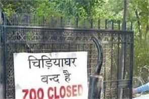 delhi zoo bird flu owl sample positive
