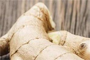 winter ginger benefits colds stomach gas