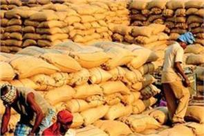 government procurement of paddy