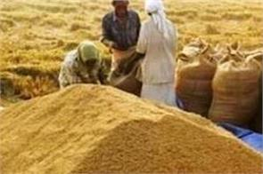 paddy procurement up by 27 15 food ministry