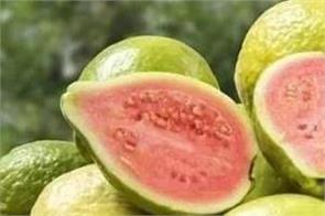 guava is a boon for diabetics  be sure to include it in your diet