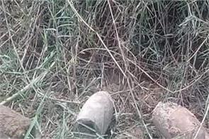 haryana ambala markanda river bomb