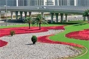 dubai 60 million flowers
