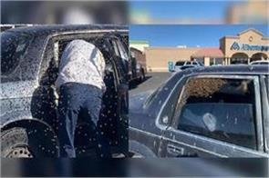 usa  about 15 000 bees camped in a person  s car  see pictures