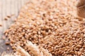 punjab gets ccl for wheat procurement