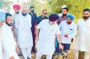 sukhbir badal appeals to cm for crop rotation
