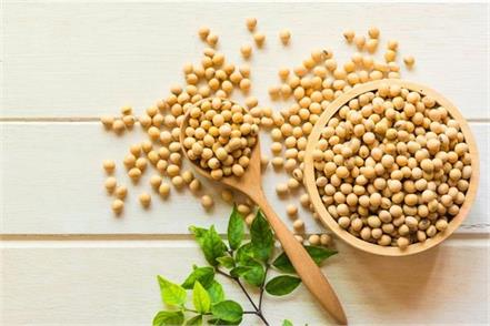 soybeans  protein  benefits