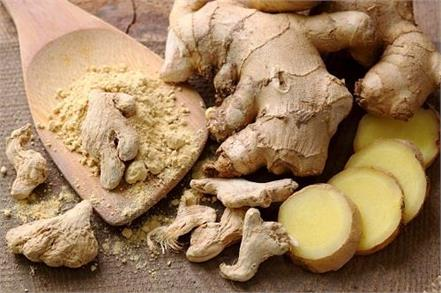 ginger one piece benefits