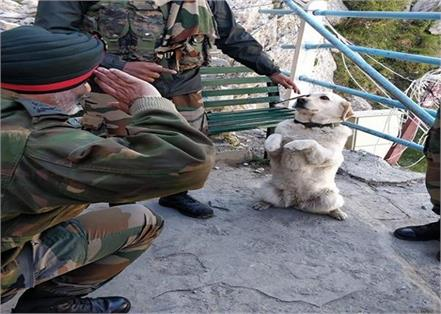 dog menaka saluting top army commander kjs dhillon