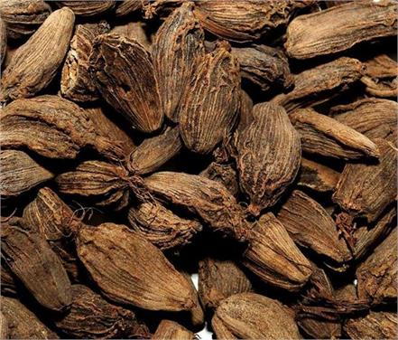 large cardamom benefits