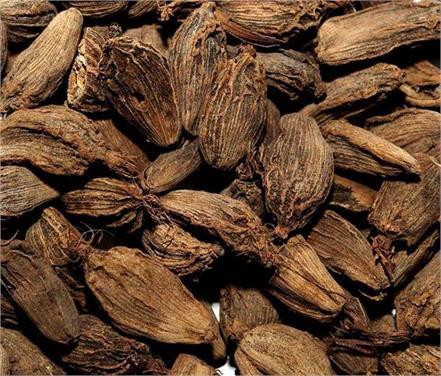 large cardamom benefits