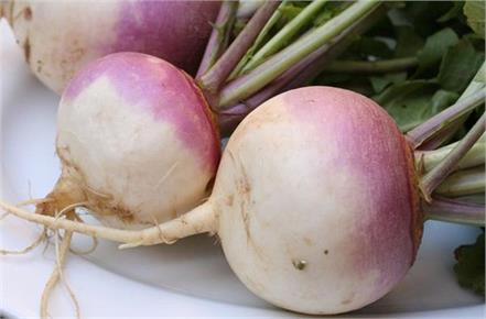 turnip vegetable