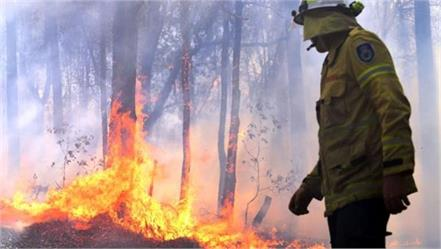 sydney threatened by australian forest fires