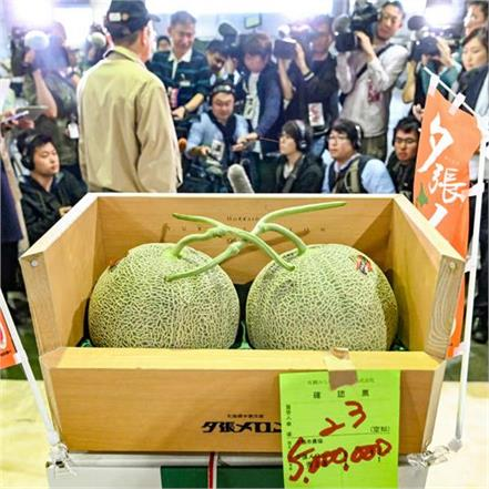 in japan market  the price of two melon is rs 31 lakhs