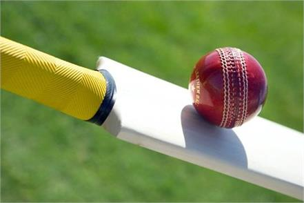 better quality cricket bat will be able to be made in less cost