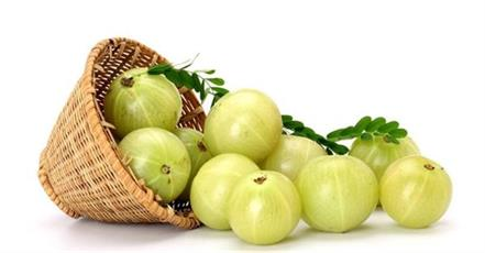 eating gooseberry jam on an empty stomach in the morning cures many ailments