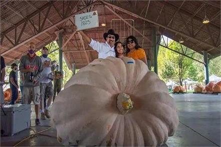 usa  830 kg pumpkin