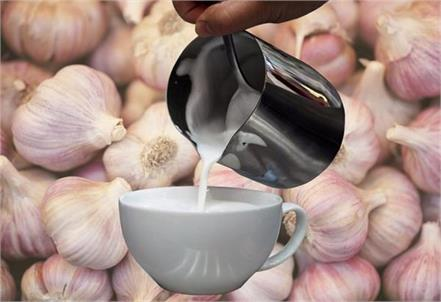body  pain  relief  garlic milk  benefits