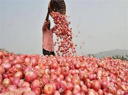 imported onion burden for india  government is  preparing to sell