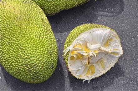 jackfruit benefits heart attack
