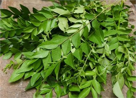 curry leaves benefits swelling hands feet