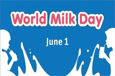 world milk day  donkey  s milk cheese