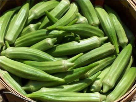 ladyfinger water body benefits