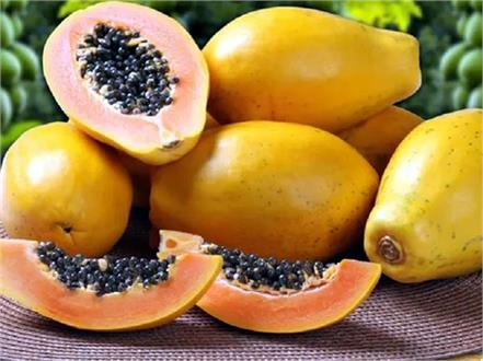 papaya seeds is that it keeps away many dangerous diseases