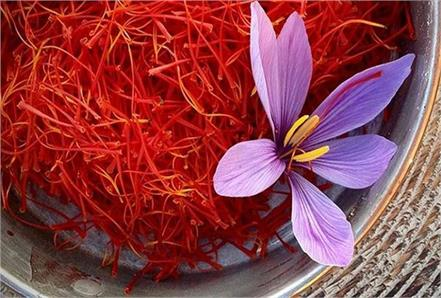 saffron benefits eyesight headache fever face heart
