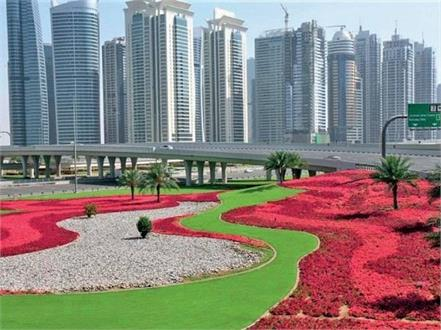 dubai 60 million flowers