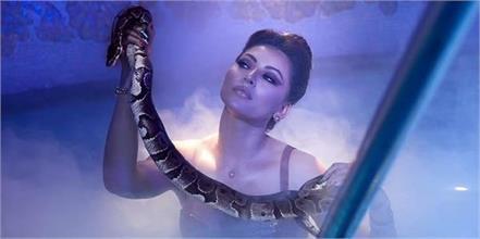 urvashi rautela pose with python