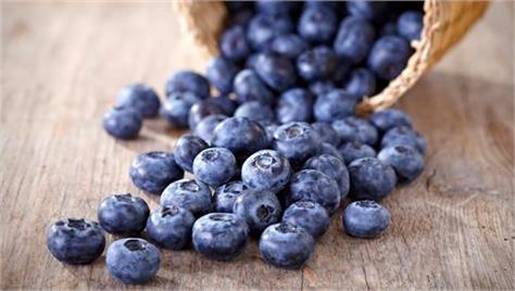 blueberries drink juice improves mental fitness