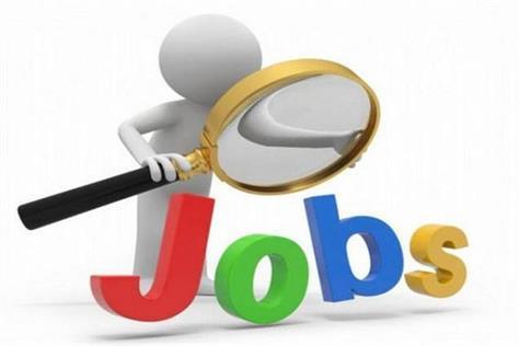 punjab government give 8500 jobs