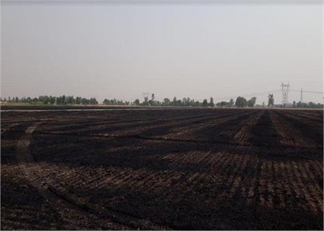 nabha  wheat  fire
